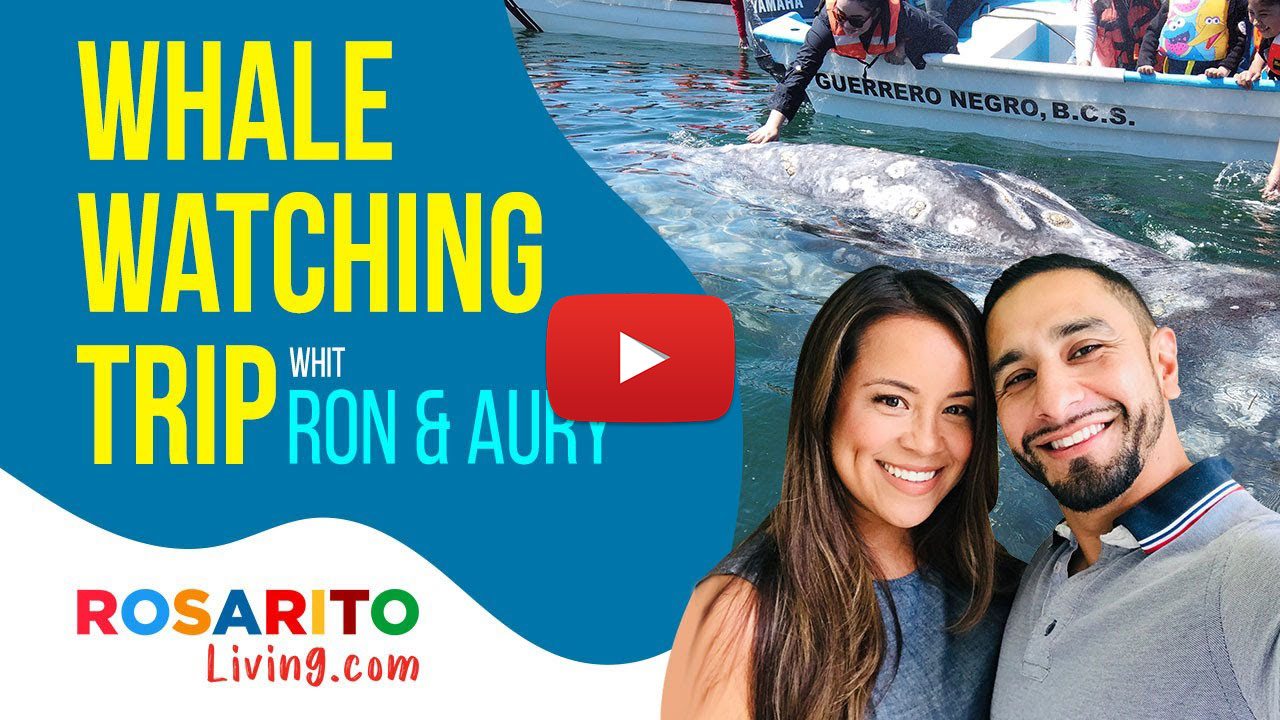 Whale Watching Experience with Ron & Aury
